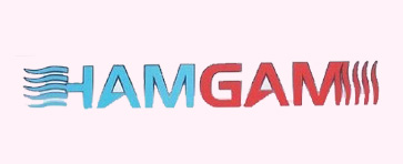 همگام